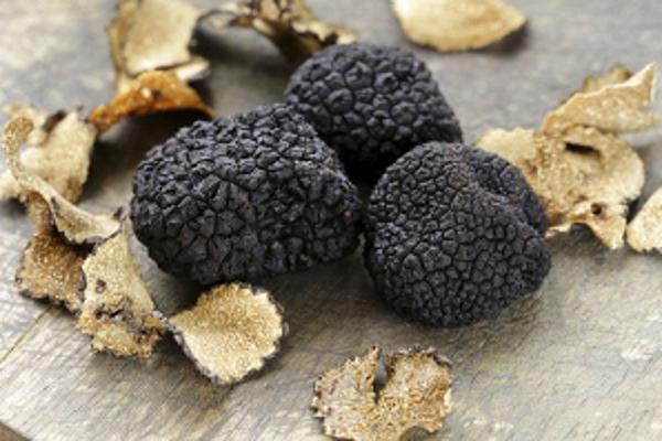 tartufo nero fragno